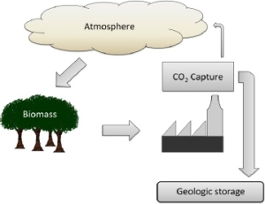 Bioenergy with carbon capture and storage (BECCS).